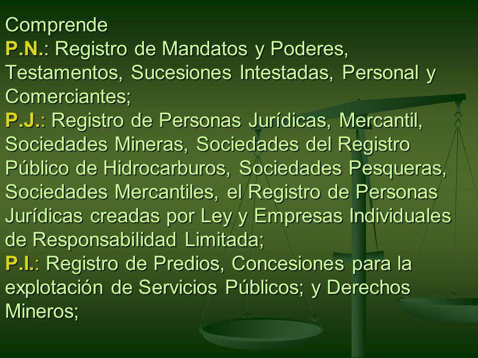 Comprende P.N.: Registro de Mandatos y Poderes, Testamentos, Sucesiones Intestadas, Personal y Comerciantes; P.J.: Registro de Personas Jurídicas, Mercantil, Sociedades Mineras, Sociedades del Registro Público de Hidrocarburos, Sociedades Pesqueras, Sociedades Mercantiles, el Registro de Personas Jurídicas creadas por Ley y Empresas Individuales de Responsabilidad Limitada; P.I.: Registro de Predios, Concesiones para la explotación de Servicios Públicos; y Derechos Mineros;