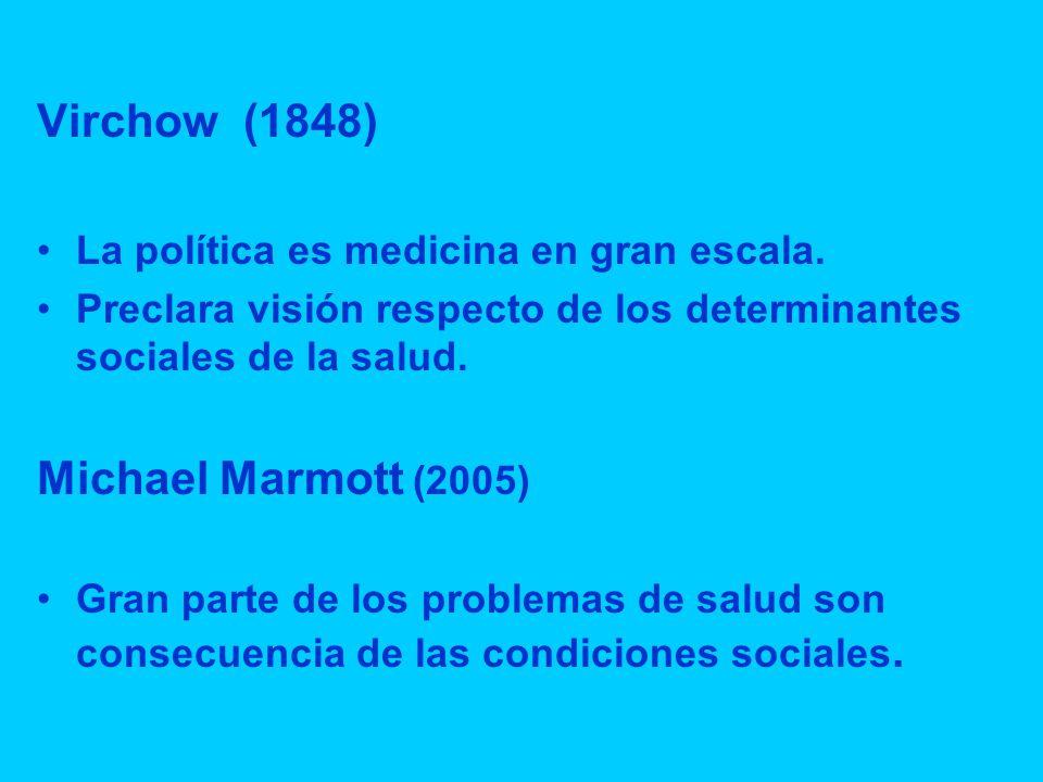 Virchow (1848) Michael Marmott (2005)