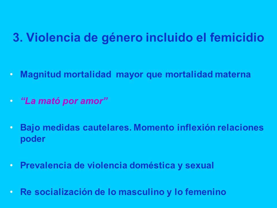 3. Violencia de género incluido el femicidio