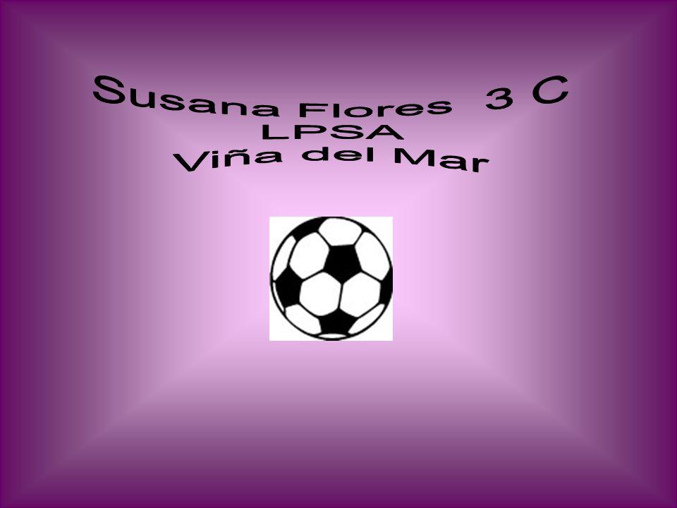 Susana Flores 3 C LPSA Viña del Mar