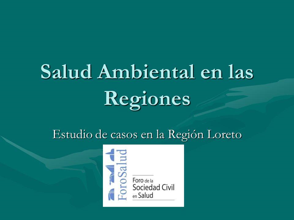 Salud Ambiental en las Regiones