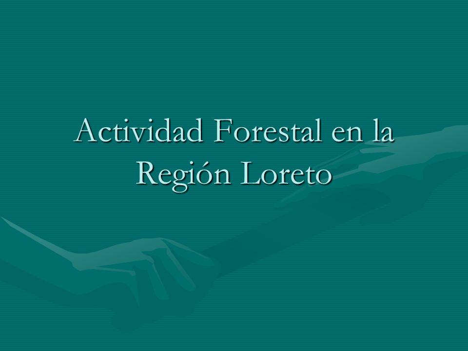 Actividad Forestal en la Región Loreto