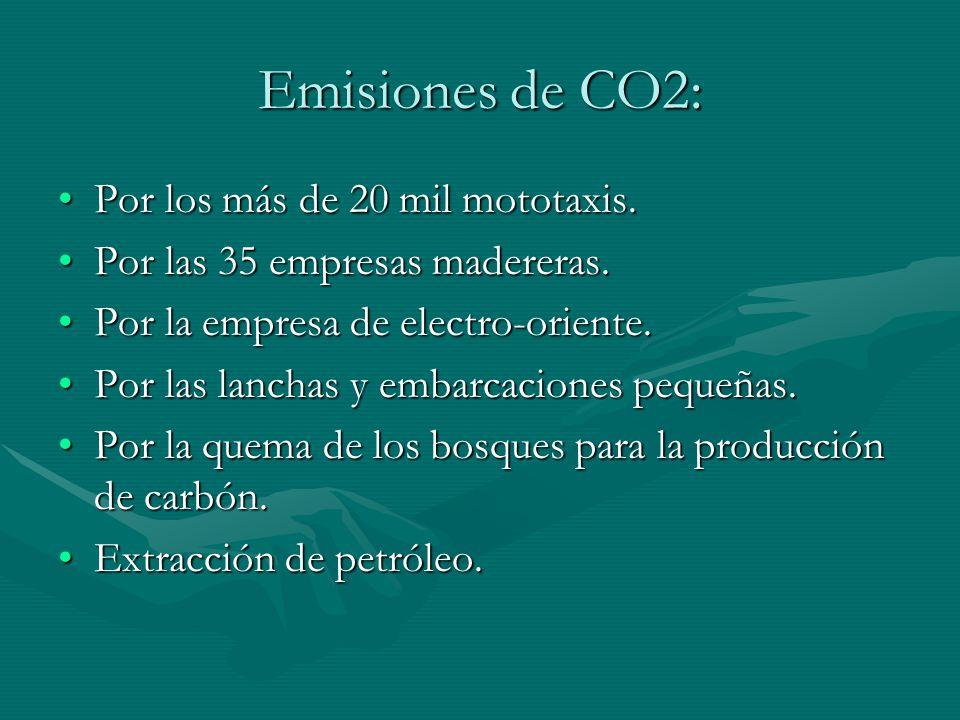 Emisiones de CO2: Por los más de 20 mil mototaxis.