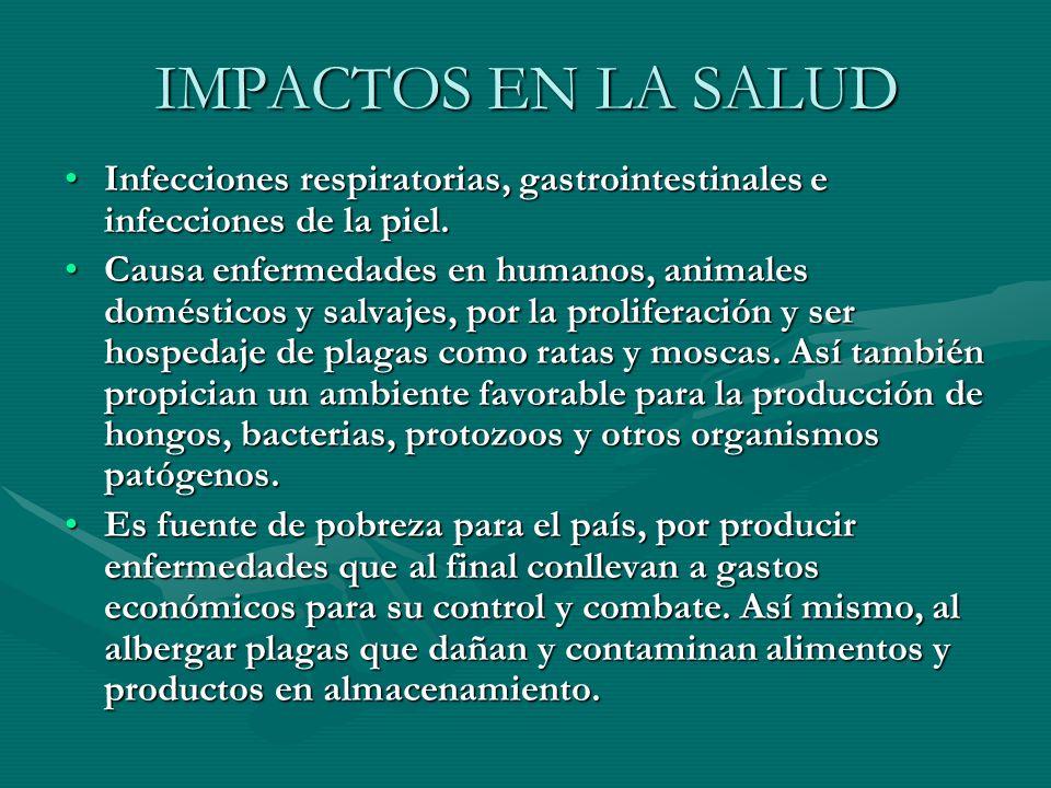 IMPACTOS EN LA SALUD Infecciones respiratorias, gastrointestinales e infecciones de la piel.