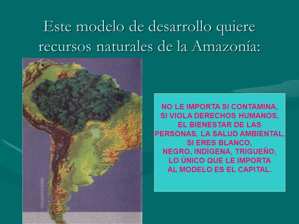 Este modelo de desarrollo quiere recursos naturales de la Amazonía: