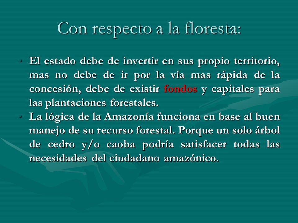 Con respecto a la floresta: