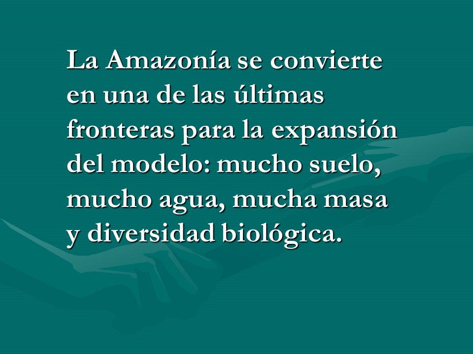 La Amazonía se convierte en una de las últimas fronteras para la expansión del modelo: mucho suelo, mucho agua, mucha masa y diversidad biológica.