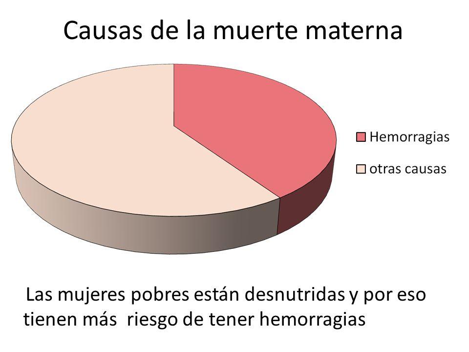 Causas de la muerte materna
