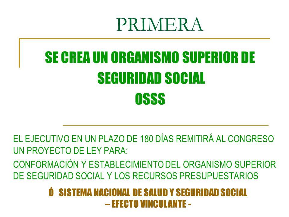 PRIMERA SE CREA UN ORGANISMO SUPERIOR DE SEGURIDAD SOCIAL OSSS