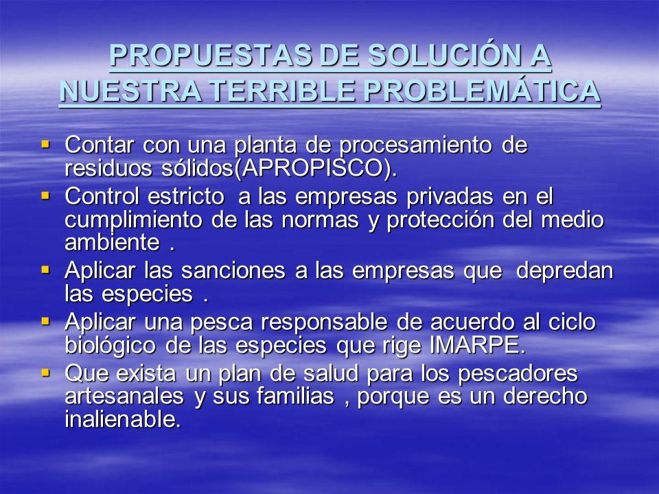 PROPUESTAS DE SOLUCIÓN A NUESTRA TERRIBLE PROBLEMÁTICA