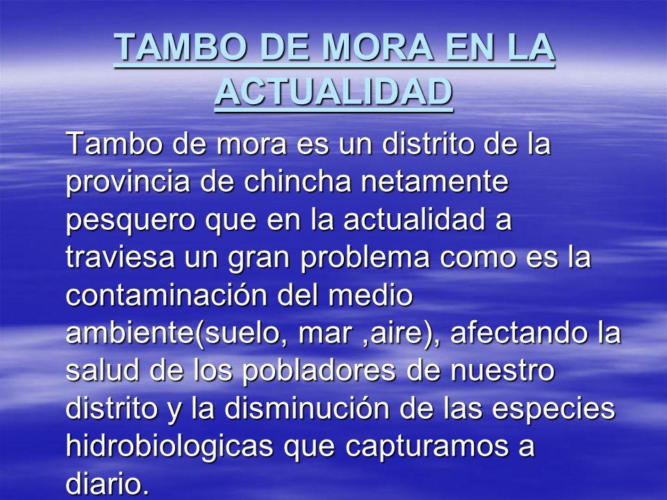 TAMBO DE MORA EN LA ACTUALIDAD