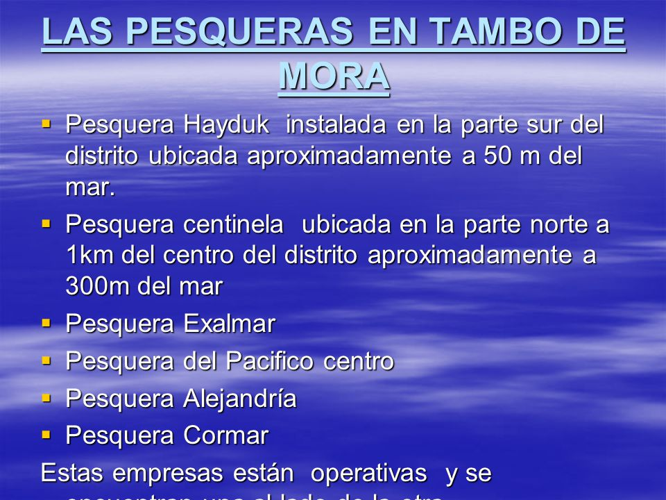 LAS PESQUERAS EN TAMBO DE MORA