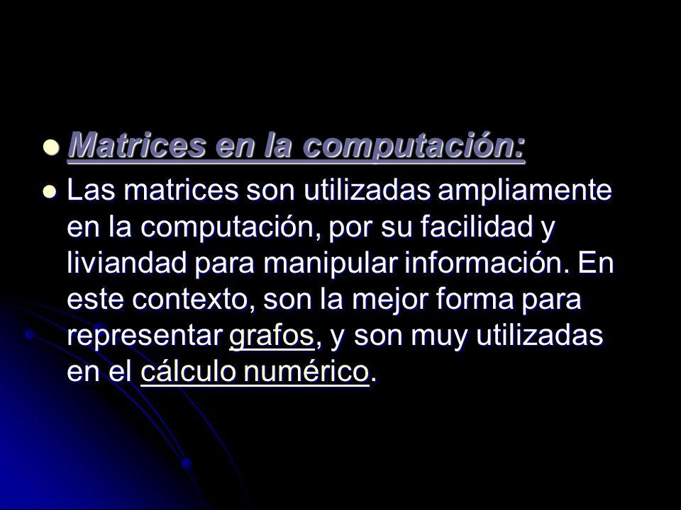 Matrices en la computación:
