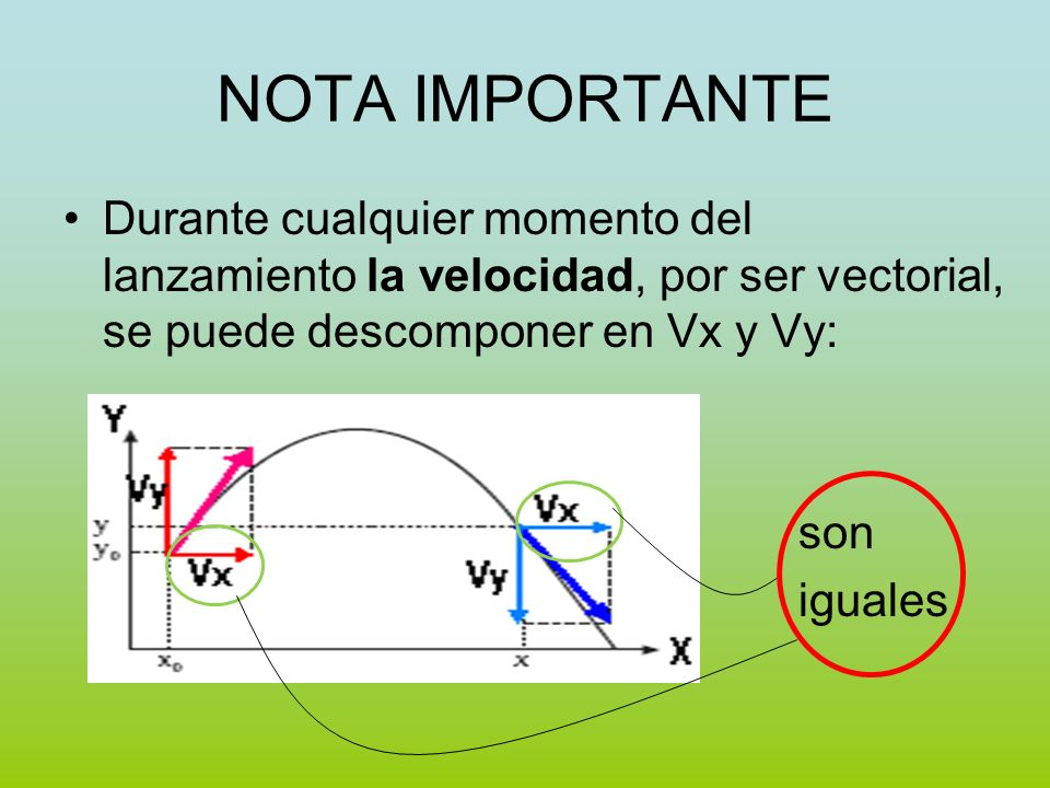 NOTA IMPORTANTE Durante cualquier momento del lanzamiento la velocidad, por ser vectorial, se puede descomponer en Vx y Vy: