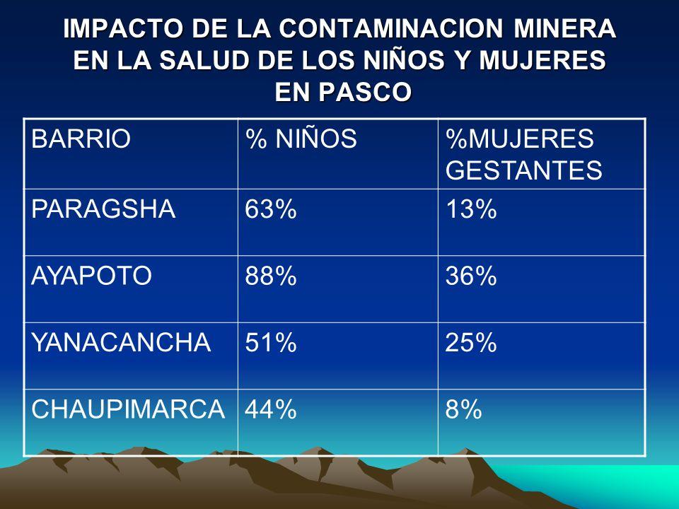 IMPACTO DE LA CONTAMINACION MINERA EN LA SALUD DE LOS NIÑOS Y MUJERES EN PASCO