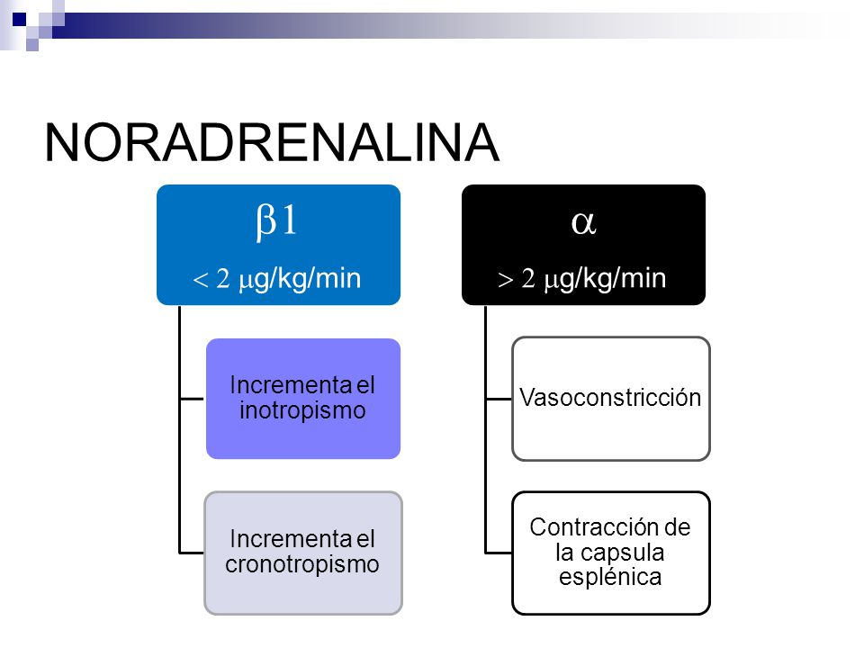 NORADRENALINA b1 a < 2 mg/kg/min > 2 mg/kg/min