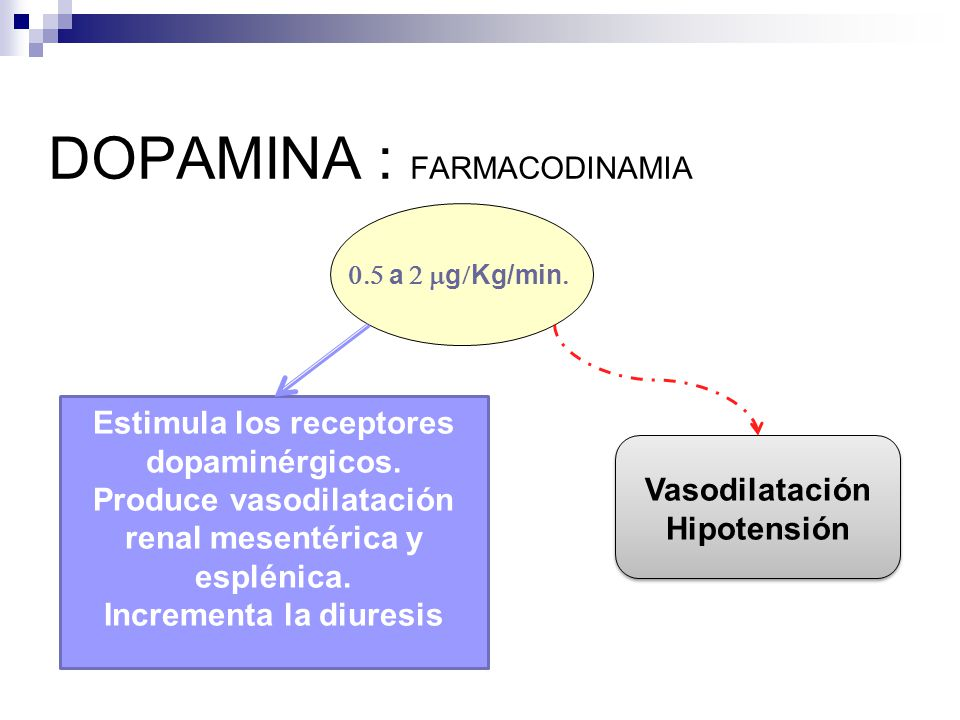 DOPAMINA : FARMACODINAMIA