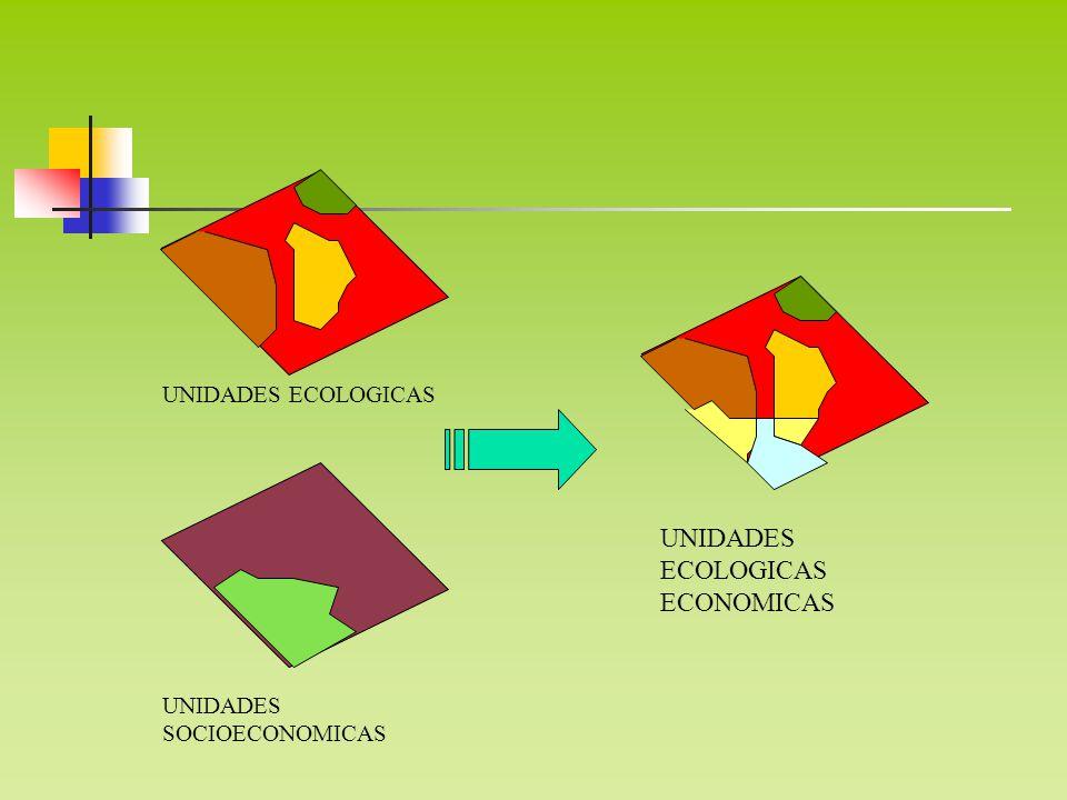 UNIDADES ECOLOGICAS ECONOMICAS