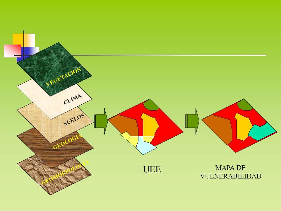 MAPA DE VULNERABILIDAD