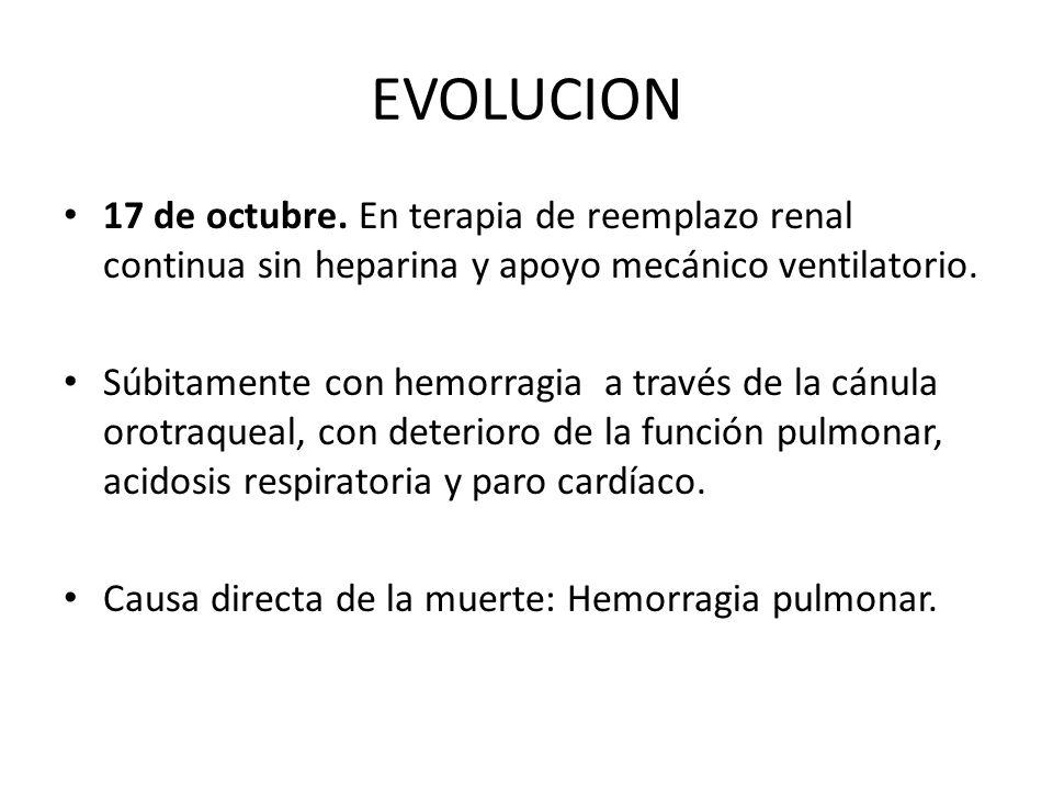 EVOLUCION 17 de octubre. En terapia de reemplazo renal continua sin heparina y apoyo mecánico ventilatorio.