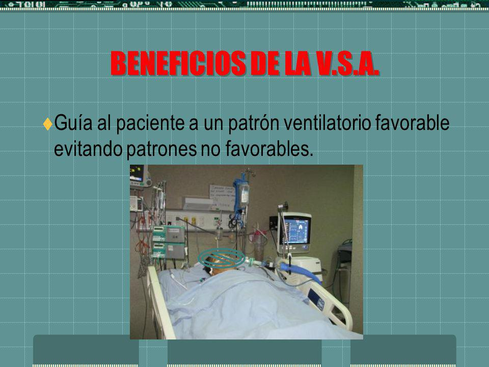 BENEFICIOS DE LA V.S.A.