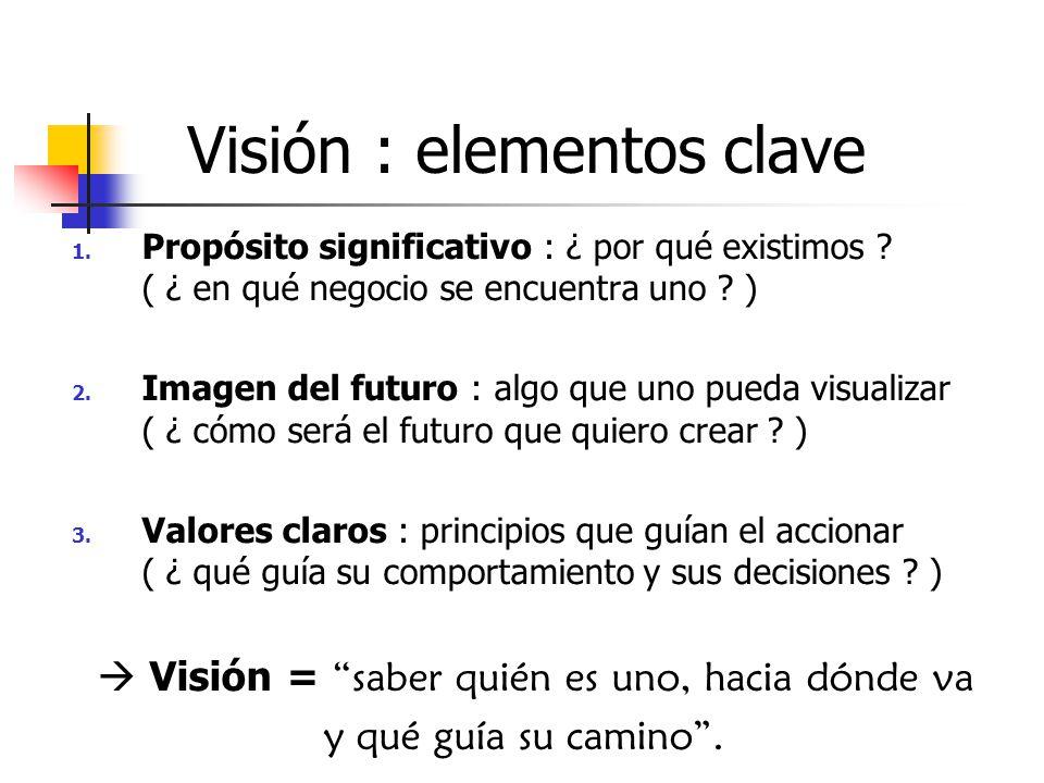 Visión : elementos clave