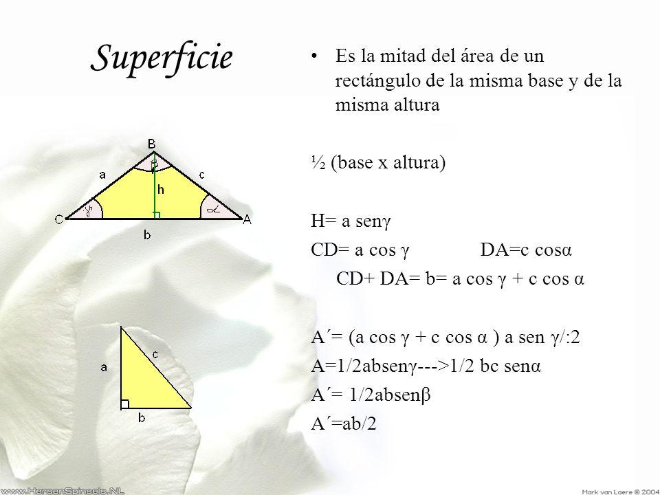 Superficie Es la mitad del área de un rectángulo de la misma base y de la misma altura. ½ (base x altura)