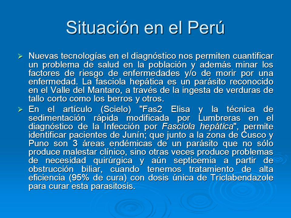 Situación en el Perú
