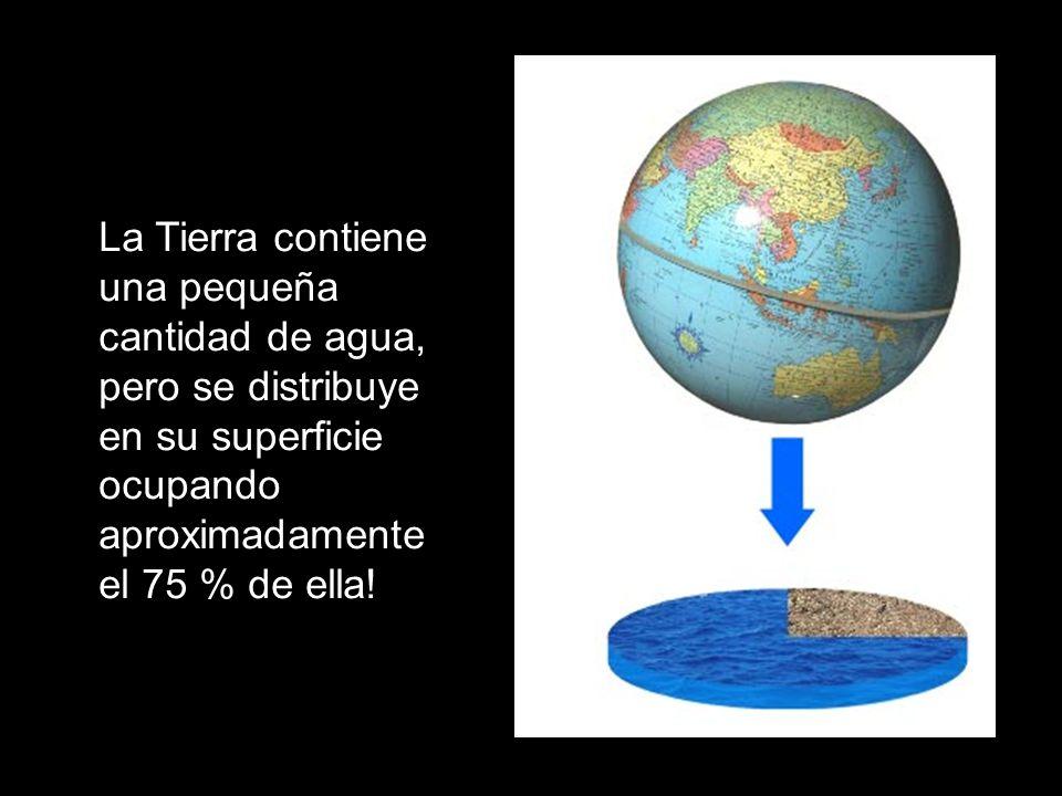 Estructura internaLa Tierra contiene una pequeña cantidad de agua, pero se distribuye en su superficie ocupando aproximadamente el 75 % de ella!