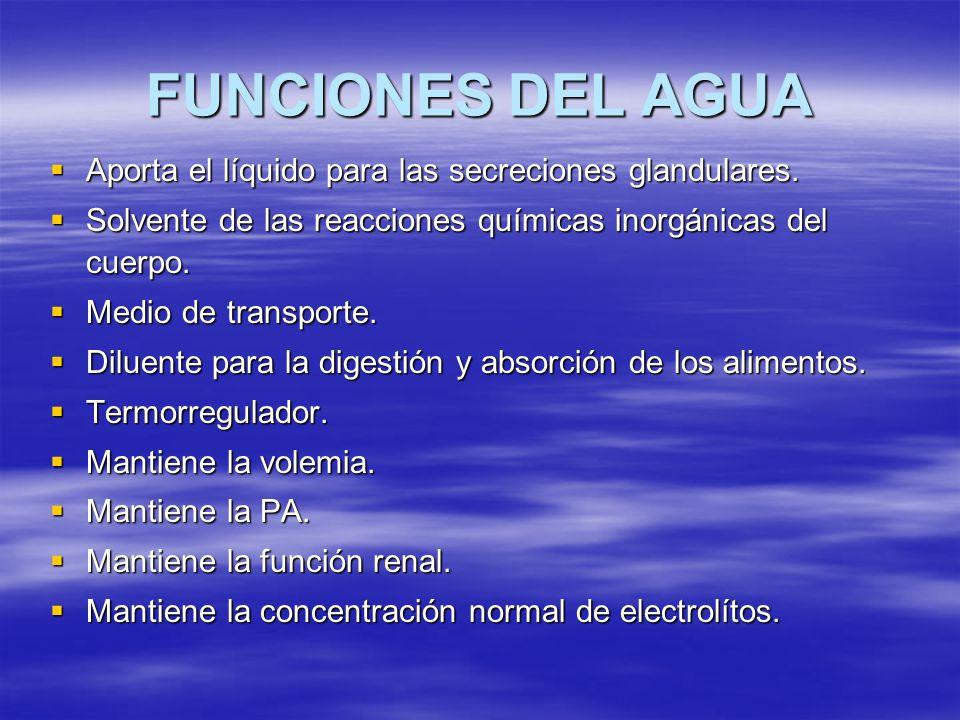 FUNCIONES DEL AGUA Aporta el líquido para las secreciones glandulares.