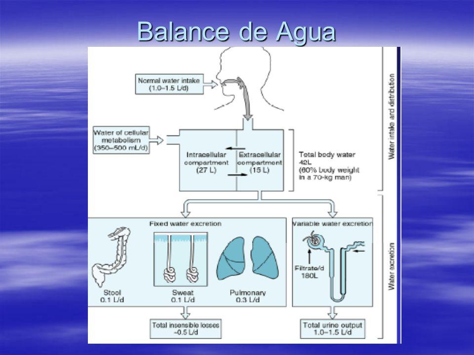 Balance de Agua