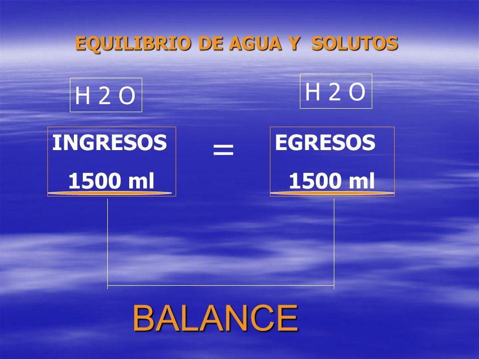 = BALANCE H 2 O H 2 O INGRESOS 1500 ml EGRESOS 1500 ml