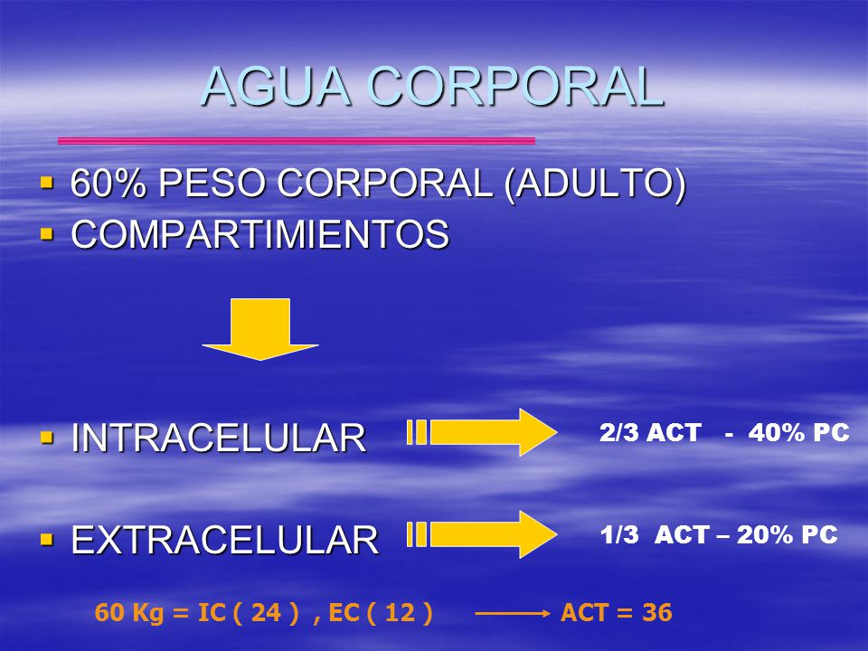 AGUA CORPORAL 60% PESO CORPORAL (ADULTO) COMPARTIMIENTOS INTRACELULAR