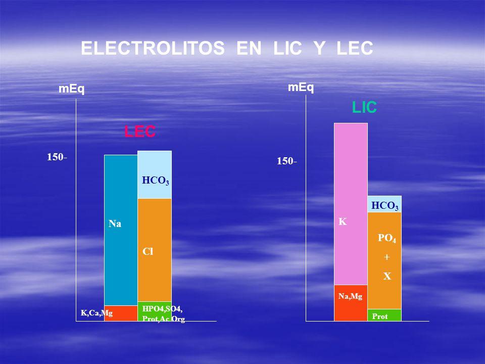 ELECTROLITOS EN LIC Y LEC