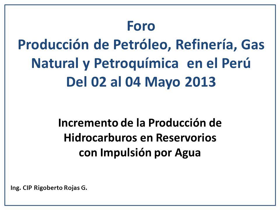 Ing. CIP Rigoberto Rojas G.