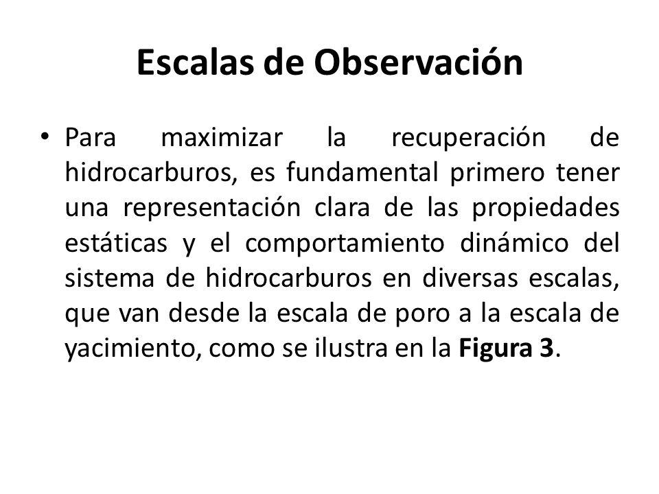 Escalas de Observación