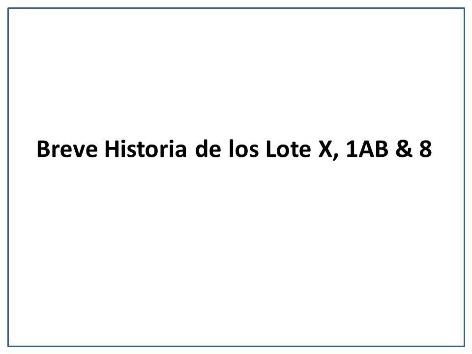 Breve Historia de los Lote X, 1AB & 8