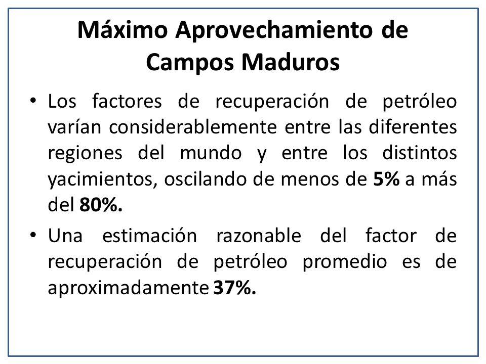 Máximo Aprovechamiento de Campos Maduros