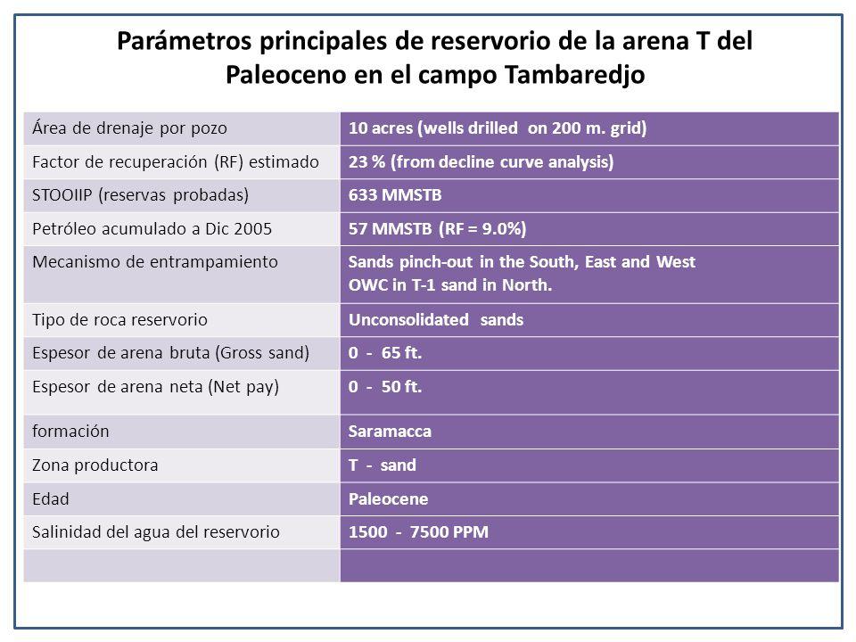 Parámetros principales de reservorio de la arena T del Paleoceno en el campo Tambaredjo