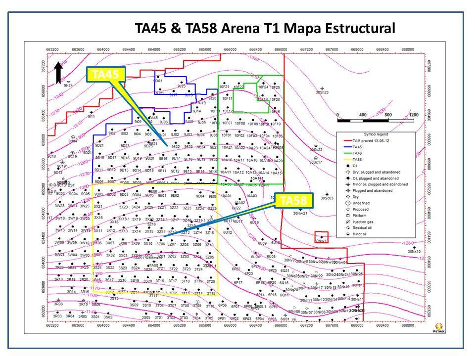 TA45 & TA58 Arena T1 Mapa Estructural