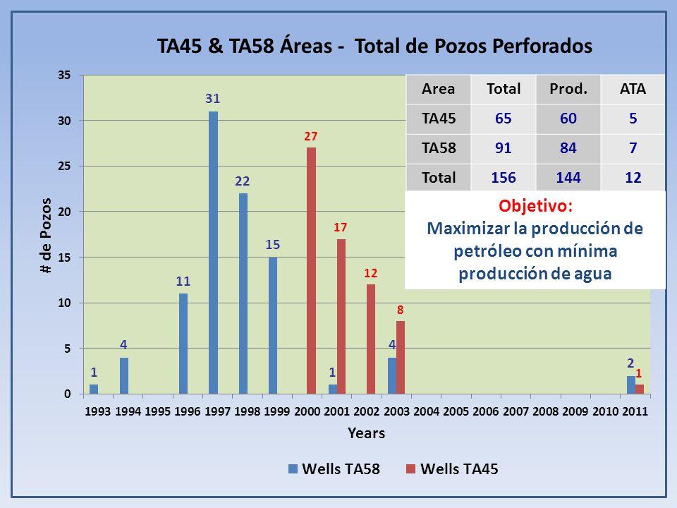 TA45 & TA58 Áreas - Total de Pozos Perforados