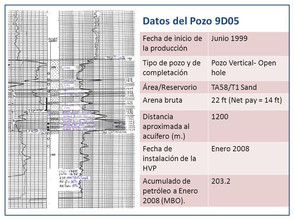 Datos del Pozo 9D05 Fecha de inicio de la producción Junio 1999