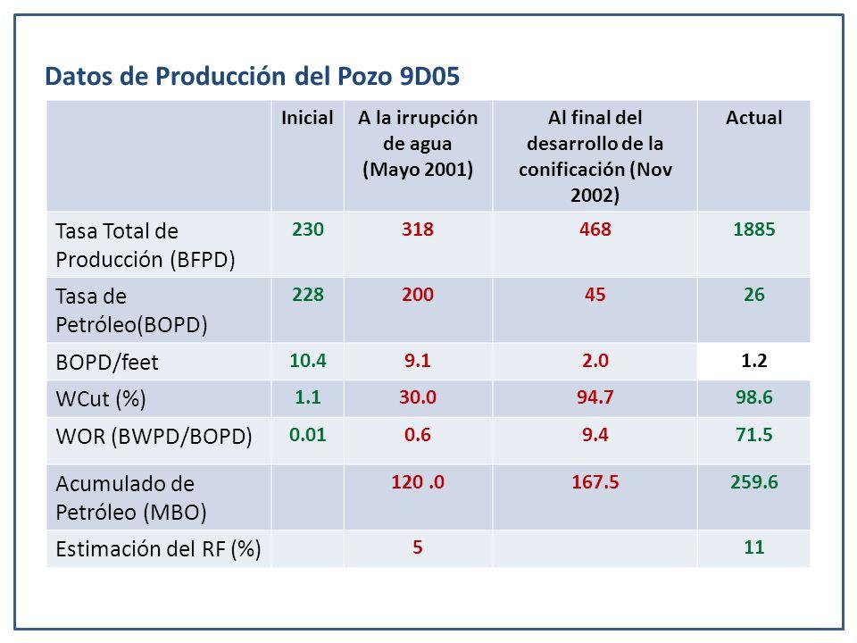 Datos de Producción del Pozo 9D05