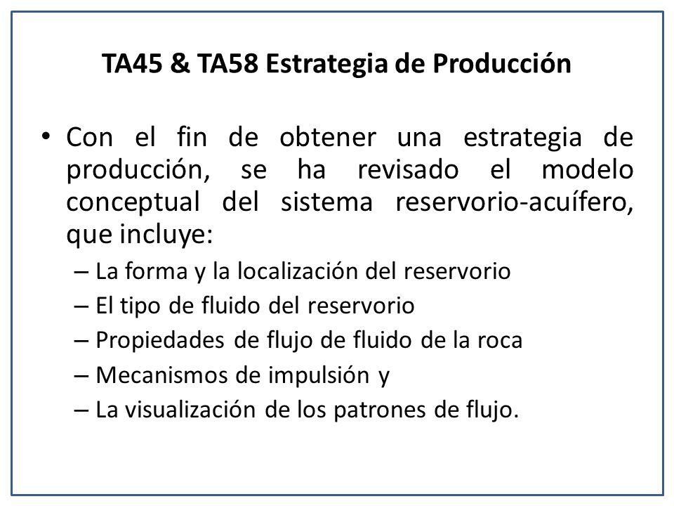 TA45 & TA58 Estrategia de Producción