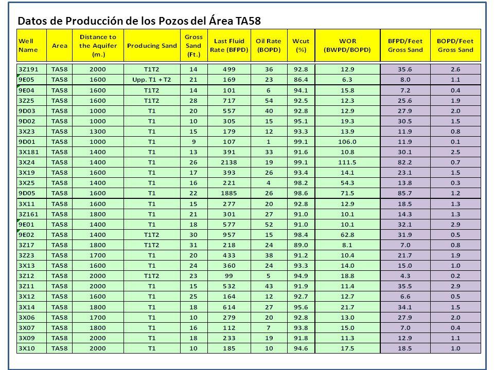 Datos de Producción de los Pozos del Área TA58
