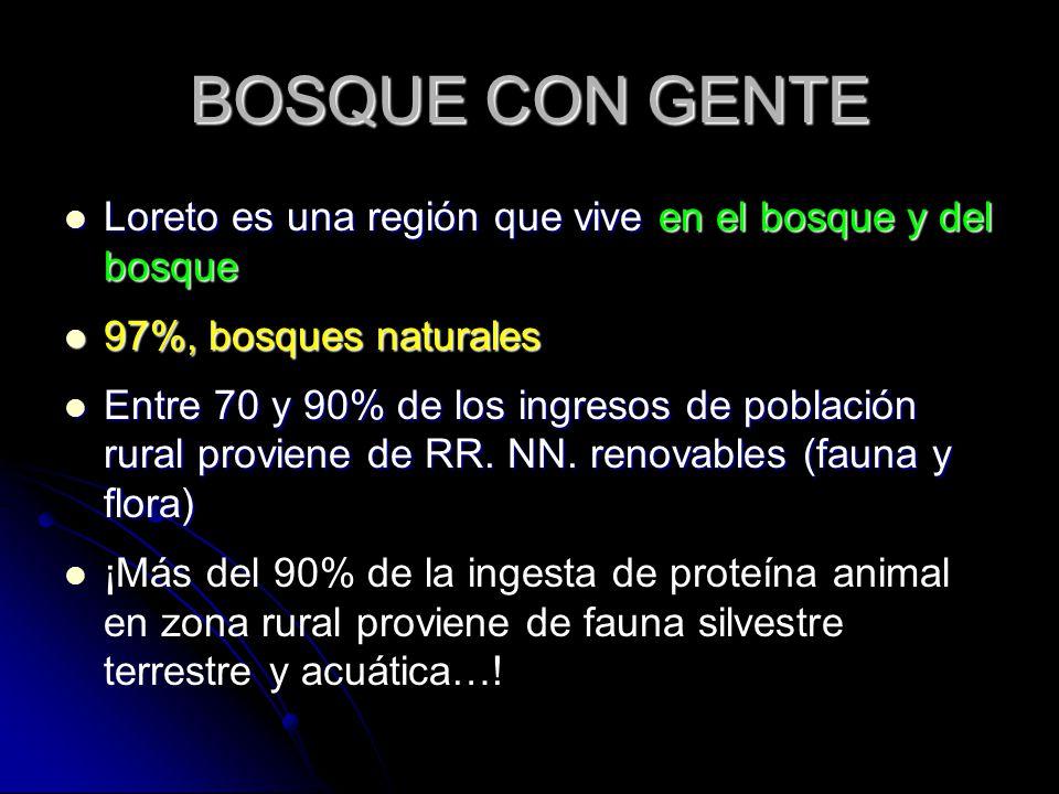 BOSQUE CON GENTE Loreto es una región que vive en el bosque y del bosque. 97%, bosques naturales.