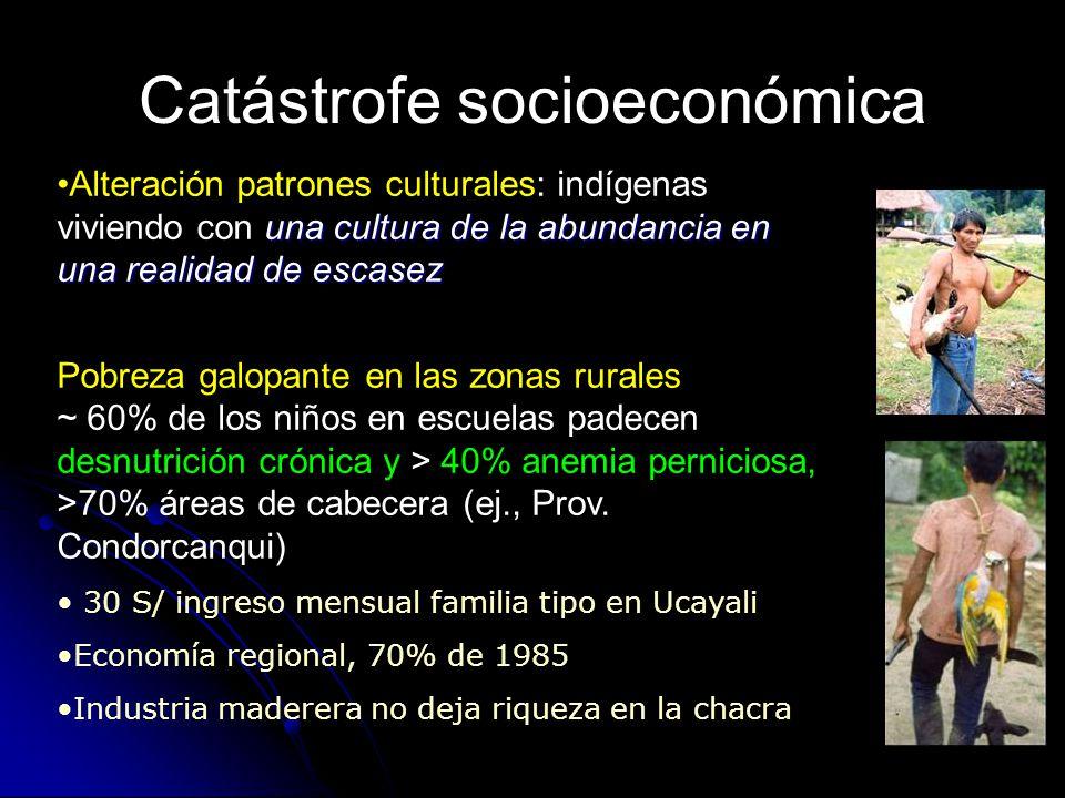 Catástrofe socioeconómica