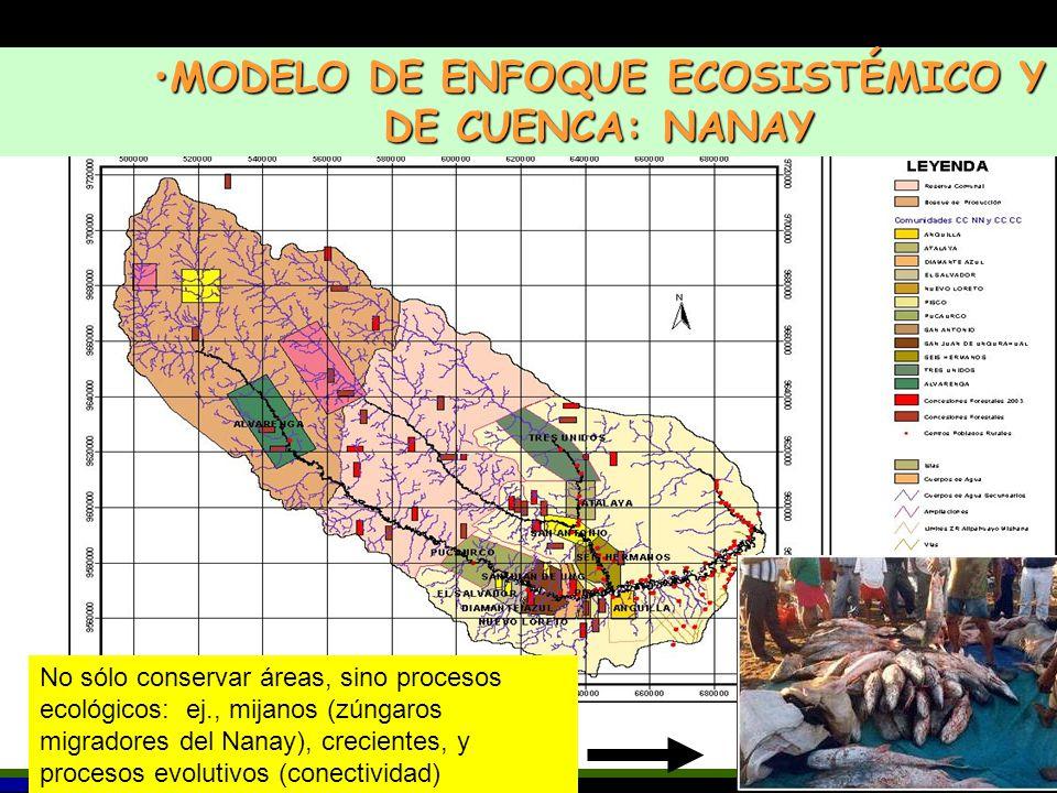 MODELO DE ENFOQUE ECOSISTÉMICO Y DE CUENCA: NANAY