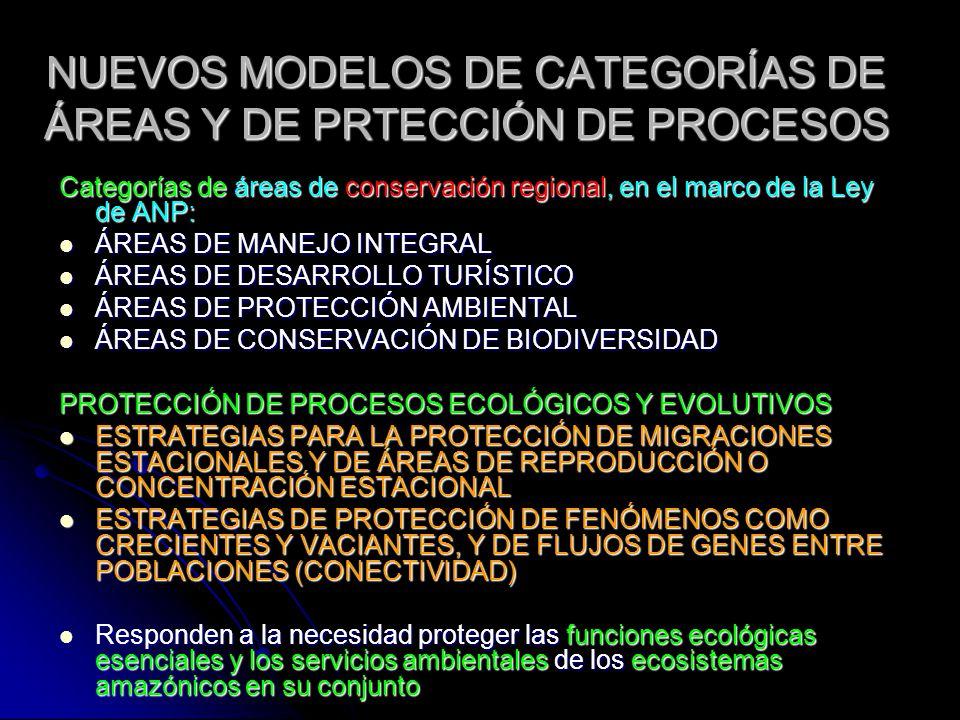 NUEVOS MODELOS DE CATEGORÍAS DE ÁREAS Y DE PRTECCIÓN DE PROCESOS