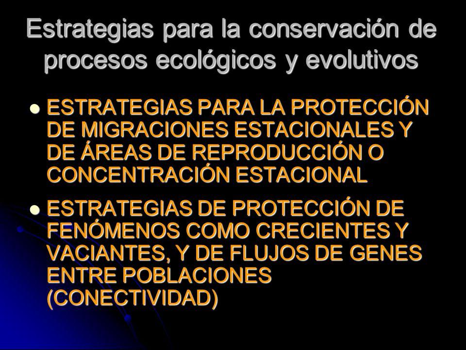 Estrategias para la conservación de procesos ecológicos y evolutivos